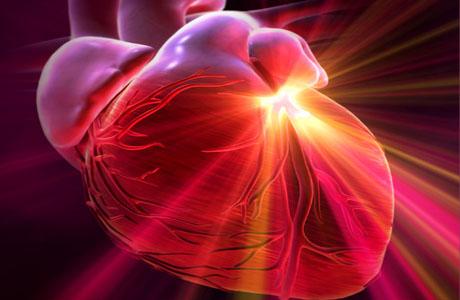 Как реагирует сердце