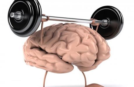 Способности человеческого мозга внушительны