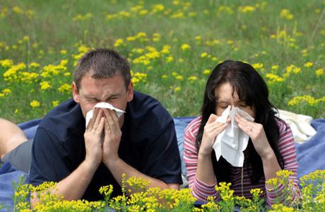 Как избежать воздействия аллергенов