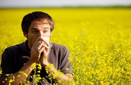 контакт с аллергеном бывает постоянным