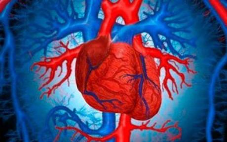 Сердечная хроническая недостаточность: болезнь сердца в отсутствие лечения