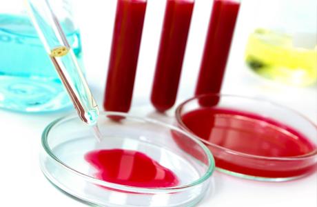 Перед биопсией придется также сдать кровь на протромбиновый индекс