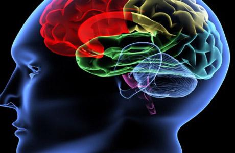Основы психоанализа по Фрейду